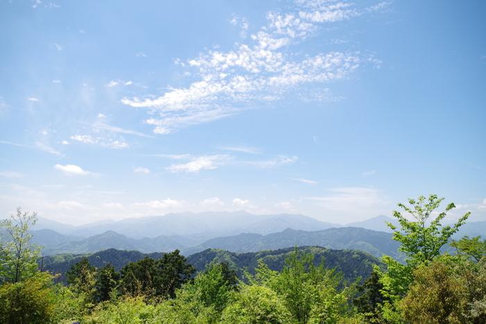 八王子市と神奈川県の境にある高尾山は、美しい自然を楽しめる人気スポット*都心から電車を使って1時間ほどで行けるのも魅力です。