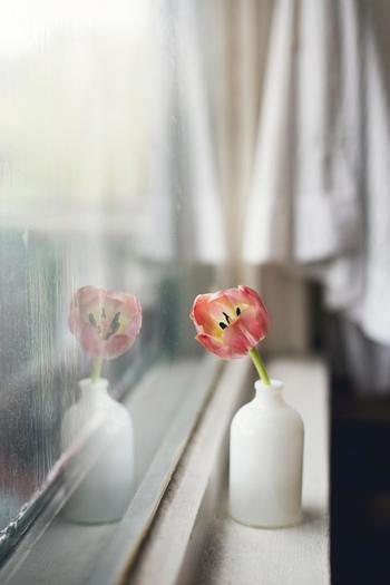 窓際などの小さなスペースにはには一輪挿しなどに可愛く活けるのもおすすめです。