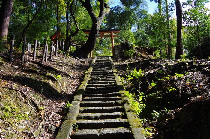下山する時は、ぜひ反対側の北参道から降りてみてください。「上りが北参道だったら大変だったな~」と思わずにはいられない、表参道に比べるとちょっとハードなコースです。健脚に自信がある方は、北参道から登ると登り応えがあって良いかもしれません。