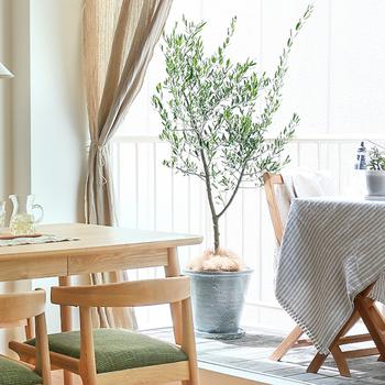 無垢の木製家具というのは、自然な風合いなのでさまざまな色味のものと相性が良く、背景にもなることができます。主張しすぎず、自然な存在感を感じさせてくれるのです。