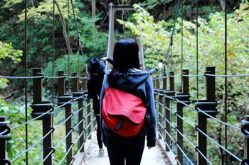 魅力溢れる高尾山!休日のお出かけに、ぜひ一度足を運んでみてくださいね。