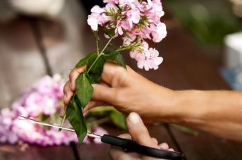 「水切り」とは、花の下の部分を水中で切ること。水中で切る理由の1つ目は、切り口から空気が入ると水がきちんとまわらなくなることがあるためです。そして2つ目の理由は切り口が乾燥することを防ぐため。乾いて切り口の状態が悪くなると、それだけ水揚げすることもできにくくなってしまいます。