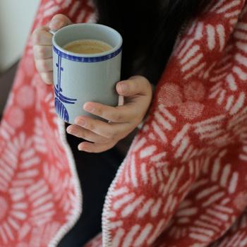 寒さが増してくる冬の季節。エアコンを使うと空気が乾燥するため、喉を痛めてしまったり、光熱費のアップも気になりますよね。そこで、節約にも繋がり、お部屋で暖かく快適に過ごすための方法をご紹介します。