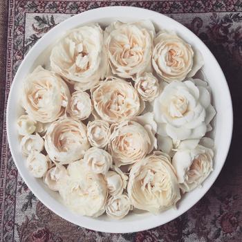 花首だけを切りオシャレな洗面器や、お皿などに浮かべるフローティングフラワーにするのも素敵です。小さなものならそのままテーブルに飾るのも◎