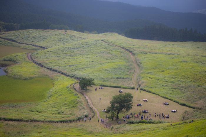 三重県と奈良県にまたがる倶留尊山(くろそやま)のふもとに広がる、広大な曽爾高原(そにこうげん)。その牧歌的風景が人々を魅了します。