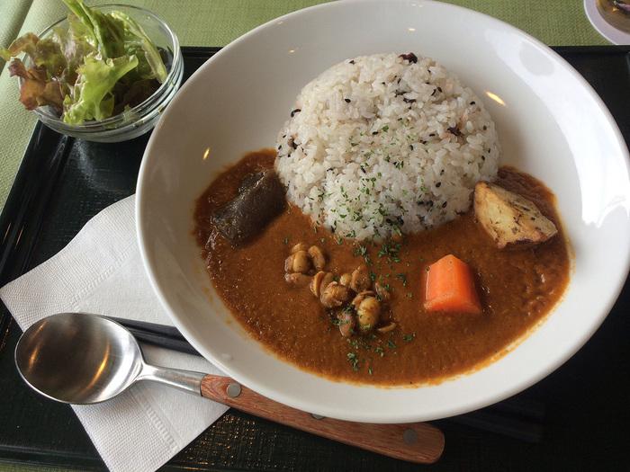 「海光庵」ではカレーやパスタなどの洋食メニューが人気です。こちらの「お寺のカレー」は、植物性の食材のみで作られたヘルシーな一品。10種類以上のスパイスが利いた本格的な味です。