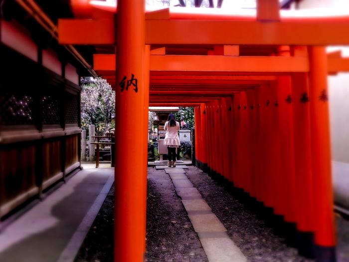 大阪天満宮境内には、お稲荷さんが祀られており、朱色の鳥居が続く、独特の景観を作りだしています。