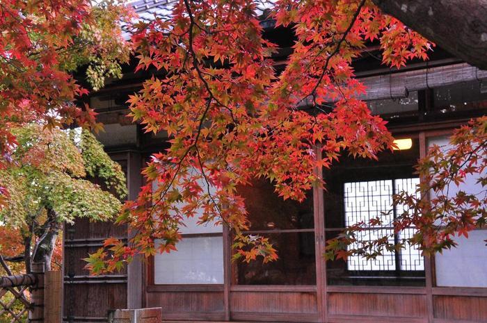 今年の秋は、気軽に行ける「箱根」に出掛けてみたくなりましたね♪