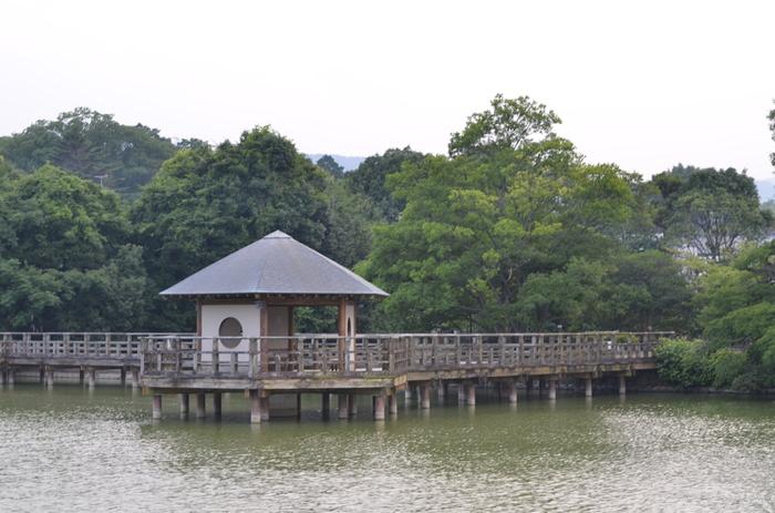 八条ヶ池と水上橋が織りなす景色の素晴らしさは傑出しています。絵画のような素晴らしい景色を眺めながら、初詣を楽しんでみてはいかがでしょうか。