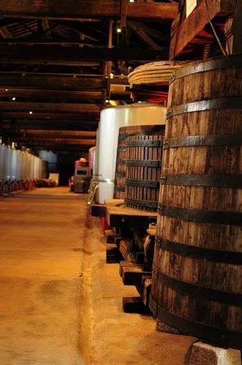 通常、ワインは葡萄をつぶしてから作られるのですが、ボジョレーヌーボーは葡萄を全くつぶさずに大きなタンクに上からどんどん入れていきます。下のほうのぶどうが重みでつぶされて自然に発酵され、最終的に渋味が少ないフレッシュなワインに仕上がるのだそう。