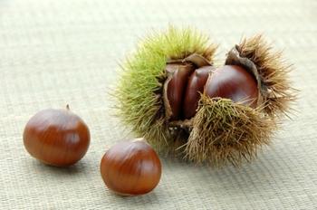 秋の味覚のひとつ「栗」は、調理が少し面倒…と思われている方も多いのではないでしょうか。焼き栗なら比較的簡単につくれて、香ばしさや甘みが増し、栗そのもののおいしさが引き出されるのでおすすめですよ!