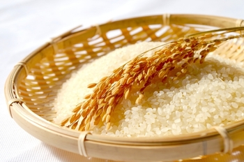 新米の季節は、お米をおいしくいただくことのできる嬉しい季節ですよね。炊き立ての新米はそのままでいただきたいですが、焼きおにぎりにしてみてもいかがでしょうか♪