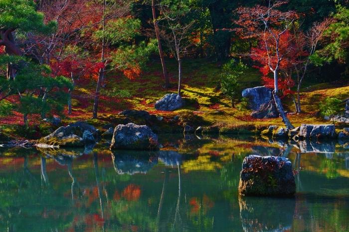 池の水面に映り込む紅葉も見事。苔の萌黄色と紅葉の赤のコントラストや、バランスよく配置された岩との調和など、あまりの美しさについ見入ってしまいます。