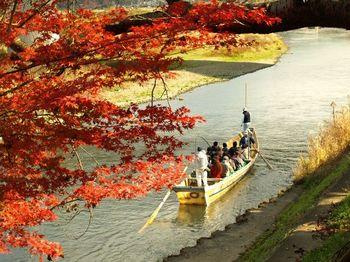下船するのは渡月橋のほど近くなので、下船後は嵐山散策をすることができますよ。