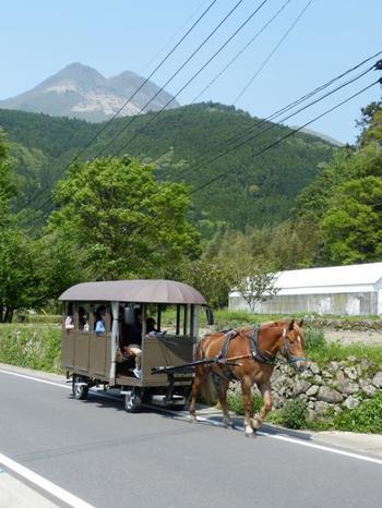 ぽっくりぽっくり。田園風景や由布岳を臨むのんびりとした観光辻馬車は、天気がいい日は最高に気持ちがいいものです。さあ、馬車に乗って由布院のアートスポットやカフェを巡ってみましょう!