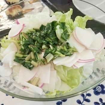 【あやめ雪カブの「しゃきしゃきサラダ」】  皮の一部が紫色の品種「あやめ雪」というカブを使ったサラダは、爽やかな印象。キメが細かくて甘いので、皮ごとスライスして使いましょう。茎にドレッシングを和えて栄養満点のひと皿です。