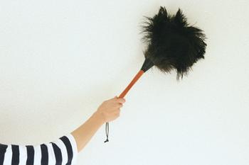 静電気はホコリを吸い寄せる原因と言われ、知らず壁や床にホコリを集めてしまっています。それを取り除けるのが100%自然素材の羽はたきです。化学繊維のはたきに比べ静電気が起こりにくく、柔らかな毛先はしっかりホコリを取り除いてくれますよ。羽ならではの軽さも魅力的ですね。