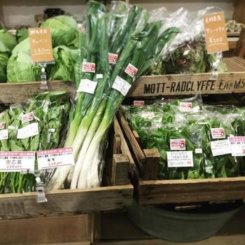 葉物野菜や買い出しで足りていない食材を最後にプラス。冷蔵庫や食品庫をみまわして買いもれがないかチェックしましょう。