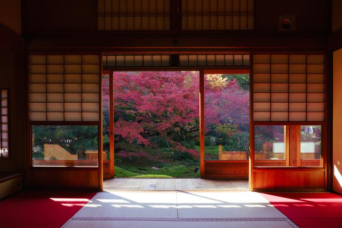 紅葉スポットとして人気の東福寺のそばにありながら高台にあるためか、比較的静かに紅葉を見ることのできる穴場スポットでもある雲龍院(うんりゅういん)。こちらでは紅葉シーズンのライトアップもあるので、夜の紅葉ライトアップを楽しみたい方は事前に問い合わせることをおすすめします。