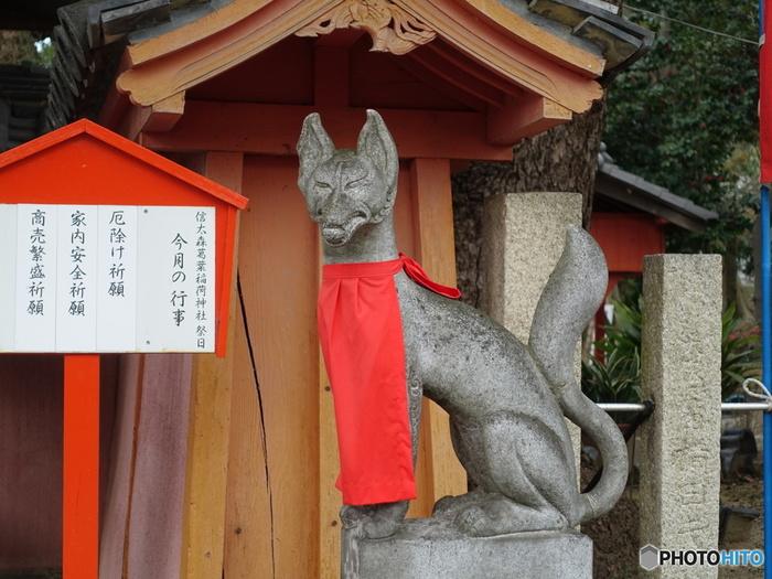 信太森葛葉稲荷神社は、陰陽師として有名な、安倍晴明の母、「葛の葉」ゆかりの神社でもあります。信太森葛葉稲荷神社を訪れ、幾度となく映像化が繰り返し行われてきた「陰陽師」の世界観に浸ってみるのもおすすめです。