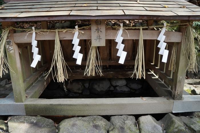 境内には、「白水井」と呼ばれる井戸があります。ここは、かつて白い湧水が溜まっており、「見えにくくなった目が見えるようになった」などの伝承が残されている場所です。