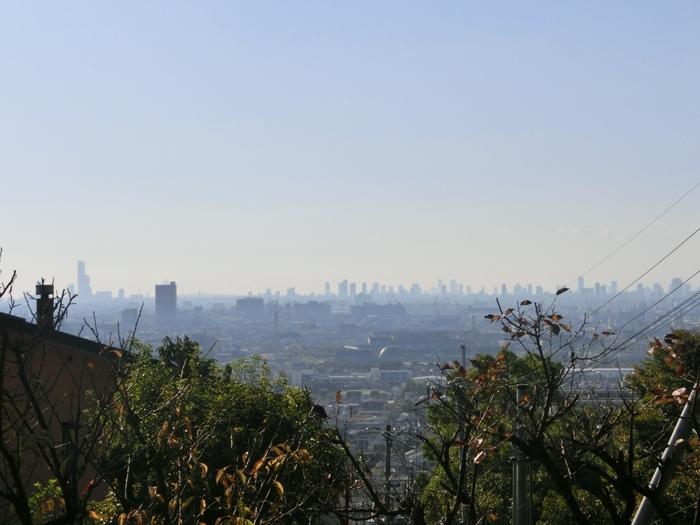少し高台に位置する板岡神社の境内からは、大阪平野を一望することができます。