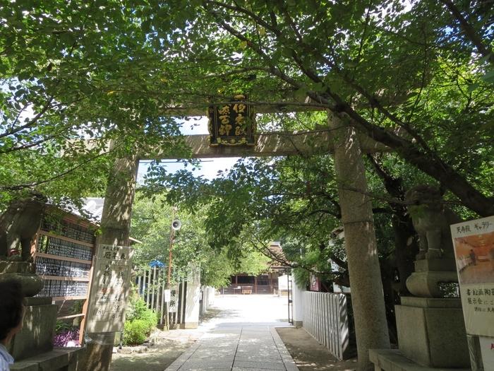 大阪府藤井寺市に鎮座する道明寺天満宮は、学問の神様、菅原道真公と、そのおばの覚寿尼公、天穂日命を祀る神社です。境内は豊かな緑に囲まれており、「大阪みどりの100選」にも選定されています。