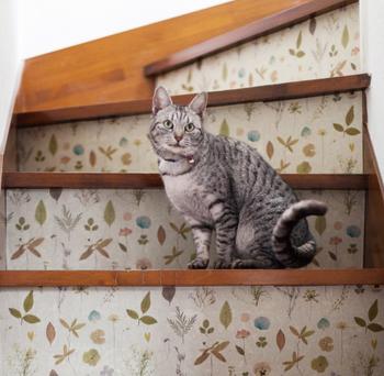 階段を上るたびに明るい気持ちになれますね!