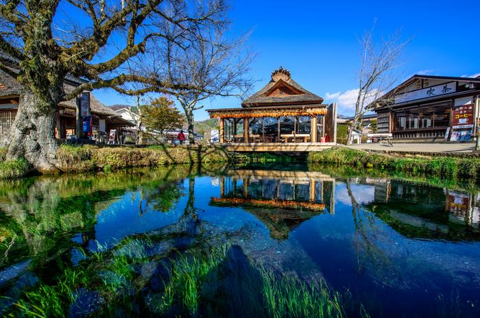 山梨県の南東部に位置する8カ所の湧水池「忍野八海(おしのはっかい)」。天然記念物、名水百選に指定されています。八海で最大の湧水量を誇る「湧池(わくいけ)」は忍野八海を代表する池です。