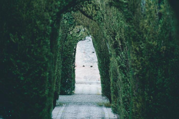 大抵の有名な宮殿には立派な庭も併設されており、隅々まで完璧に手入れがされているお庭は見ていて心が清々しくなります。ガーデニングに興味がある方もない方も、世界の名庭が織り成す、お花や植物、装飾のハーモニーに癒されちゃいましょう!今回は、ヨーロッパの名庭、4箇所をご紹介していきます。