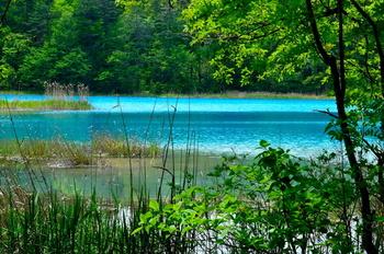 弁天沼は、明るい水色が特徴の湖沼。壮大な弁天沼に広がる水色の湖沼は、とても澄んでいて美しいと評判です。