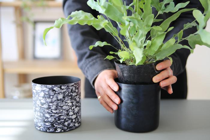 居心地の良さがぐっと変わる◎〈グリーン・お花〉を気軽に取り入れるヒント