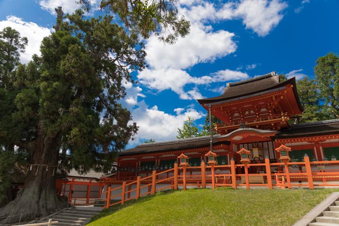 鮮やかな朱塗りの社殿が森林に映える、春日大社(かすがたいしゃ)。境内南側には日本で唯一、夫婦神が祀られている夫婦大国社(めおとだいこくしゃ)があり、縁結びや夫婦円満の御利益があるとして訪れる人が後を絶ちません。