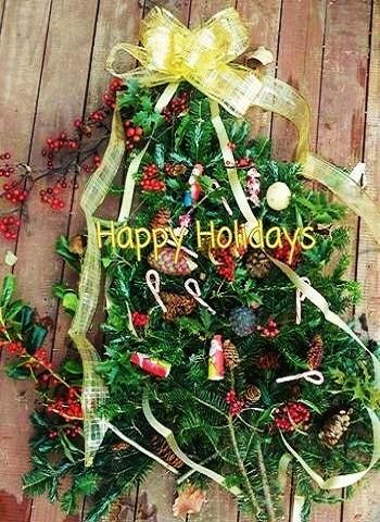 """""""用心深さ""""""""保護""""の花言葉どおり、クリスマスリースの魔除けとしてもおなじみ。 プレゼントする際は、ケガにご用心。"""