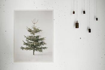 大きなクリスマスツリーが飾れないおうちにはポスターツリーはいかがでしょうか。クリスマスマーケットの国・ドイツのデザイナーが手がけた、もみの木ポスターはまるで本物がそこにあるみたい!