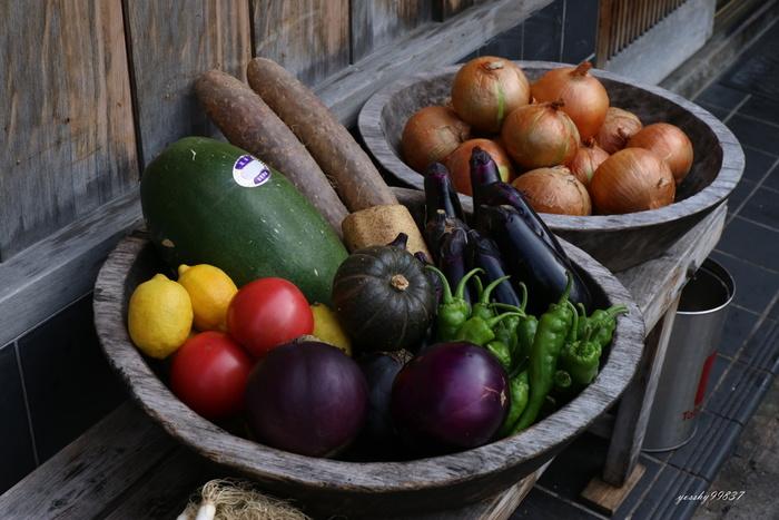 お買い物も、調理もカンタン。1食材でつくる「野菜のおかず」を食卓に♪