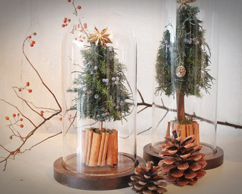 こちらはシンプルでモダンな雰囲気の、ガラスドームに入ったクリスマスツリー。プリザーブドのツリーとドライアイテムで自然な風合いが素敵です。ほこりがかぶることもなく、サイズもお手ごろなので、毎年、置く場所をかえて楽しめそう。