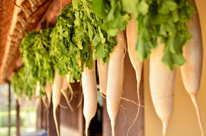「大根」も冬野菜の代表格。おでん、味噌汁、大根おろし、炒め物…1本あればいろいろ作れてしまいます。  大根には胃を保護する消化酵素がたくさん含まれているので、年末年始の飲み過ぎ、食べ過ぎのアフターケアにもおすすめです。また、葉の部分もβカロテンやビタミンC、カルシウムなど栄養豊富なので捨てずにいただきましょう!
