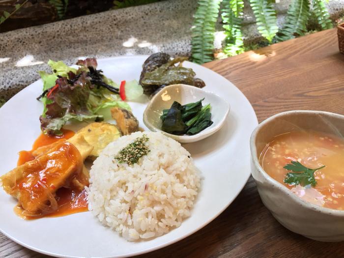 野菜と雑穀が主役の日替わりランチも人気メニューのひとつ。素材の味が活きるよう、調味料が控えめなのが特徴。ダイエット中の方も安心して食べられるのがうれしいですね。よく噛んで、一つひとつの味を堪能しましょう。