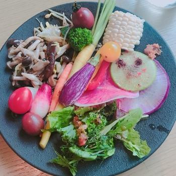 シンプルなプレートに盛り付けた野菜は、アートのような美しさ。雑穀やスーパーフードなどのトッピングもできるので、ダイエットやデトックスにも良さそう。