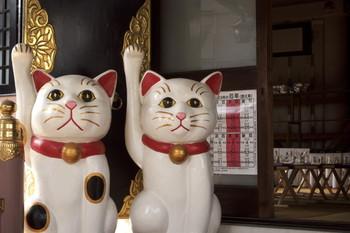 至るところに招き猫があり、とても可愛らしい雰囲気*こちらには「福禄寿(ふくろくじゅ)」が祀られています。