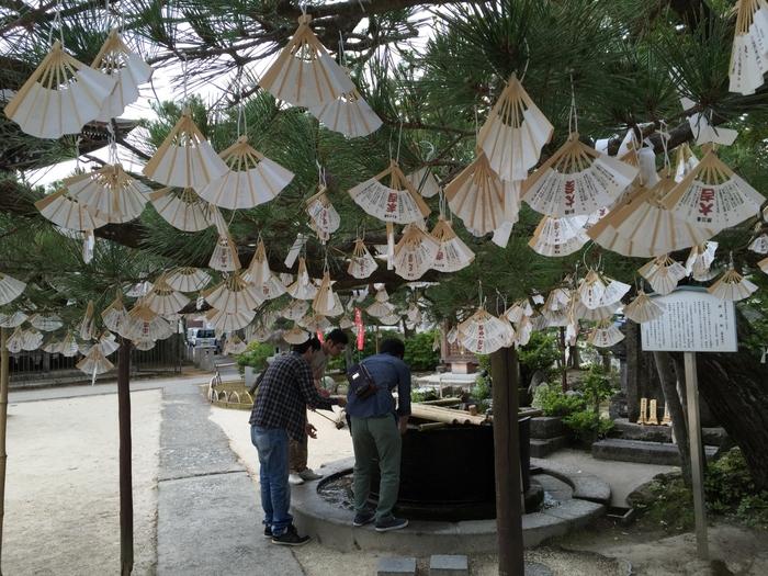 文殊の知恵で日本三大文殊のひとつといわれる「智恩寺」は、受験生の参拝者が多いお寺。知恵を授かる扇の形のおみくじが有名で、数多くの扇が木に吊るされている様は、まるで花が咲いたよう。扇は持ち帰らず、木に吊るすのが習わしだそうです。