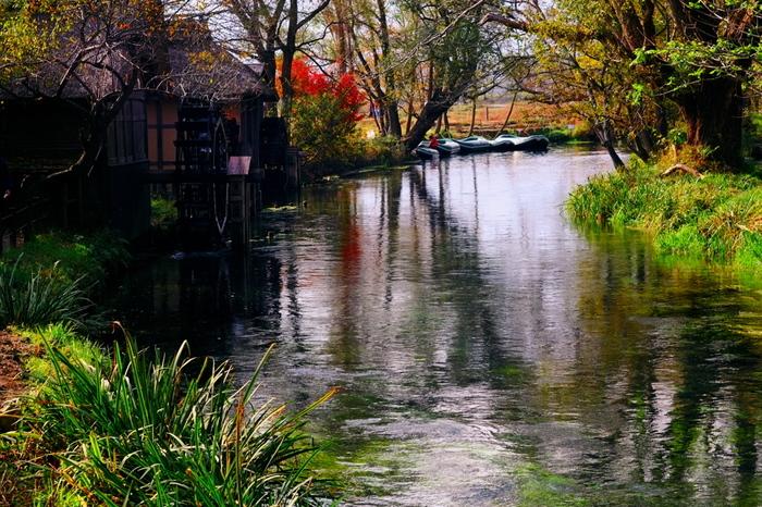名水百選にも選ばれている透明感いっぱいの蓼川。緑あふれる時期のクリアボートも清々しく快適ですが、秋の色づく木々が川面に映る絵画のような情緒ある光景もまた素敵。期間が決まっているので、訪れる際は以下のページをチェックしてください。