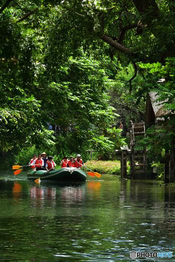 4月下旬~10月下旬の間は、水車の脇を流れる蓼川を渡るクリアボートも楽しめ、北アルプスや水車小屋を川からのんびり眺めることができます。