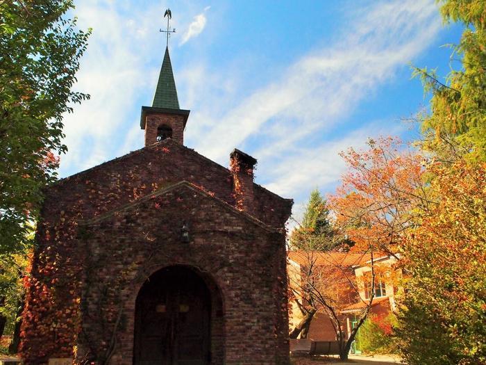 蔦のからまる教会風の外観が特徴の碌山美術館は、上記の画像のように緑いっぱいの時期も素敵ですが、秋の色づく木々に囲まれた光景もまたうっとりするほど魅力的です。