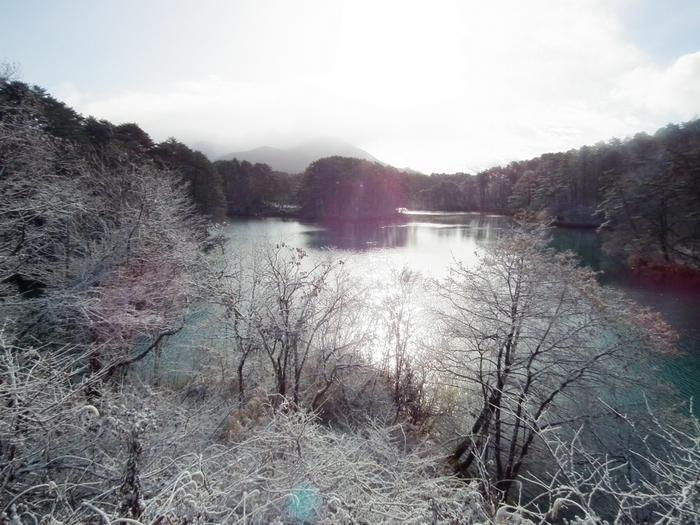 冬の毘沙門沼の景色。木々が雪で白一色に染まります。閑散とした空気の中で、落ち着いた時間を過ごすことができますよ。