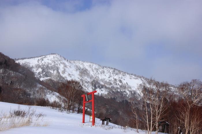 また、赤沼周辺には赤沼神社があります。この神社周辺は、冬になると雪が地面いっぱいに積もるので、荘厳とした雰囲気になります。赤沼を訪れたついでに、赤沼神社にお参りしに行ってもいいかもしれませんね。