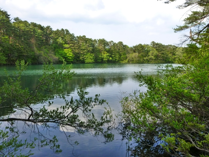 紅葉が美しい柳沼ですが、他の季節に訪れても静かで美しい風景を味わうことができます。柳沼で、ゆっくり景色を眺めて自然を感じたいですね。