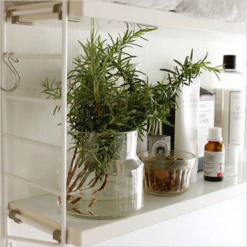 飾る場所にも一工夫。生活用品を置いている棚など、普段の生活でいつも目にする場所に置くだけでナチュラルな空間を演出できます。こちらのガラス瓶はコンパクトで広口なので使いやすく、置き場所を選びません。