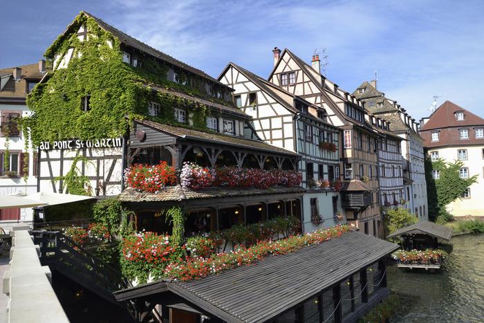 バルコニーに飾られた色とりどりの花々や、壁を覆う緑の蔦は、プティット・フランス地区の家々の可愛らしさを引き立てています。